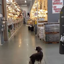 is home depot busy on black friday the home depot 69 photos u0026 60 reviews nurseries u0026 gardening