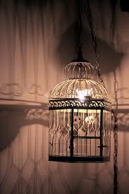 How To Make A Birdcage Chandelier 10 Birdcage Chandelier Ideas Original And Trendy Home Lighting
