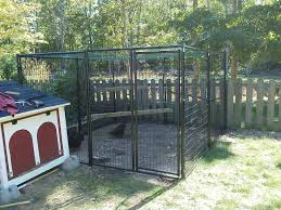 catchy collections of dog kennel run ideas catchy homes interior