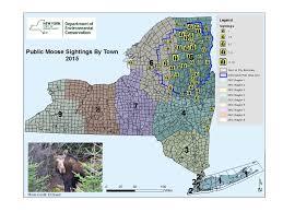 Lake Placid New York Map by Adirondack Life Article Where The Moose Are Adirondack Life