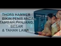 hammer of thor di batam vimax pembesarpenis pw agen resmi vimax