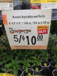 Home Depot Coupon Policy by How To Get The Best Deal On Vegetable Plants Saving The Crumbs