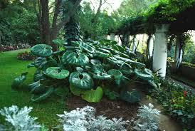 immagini di giardini fioriti giardini d italia i 10 giardini pi禮 belli da visitare