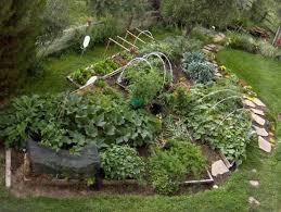 Pikes Peak Urban Gardens - no strain u201d garden method yields more veggies for less sweat u2013 the