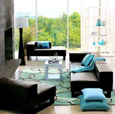 apartments extraordinary turquoise and brown living room