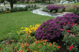 Landscaping Ideas For Front Yards by Front Yard Landscape Design For Becker1 Avenues Salt Lake City
