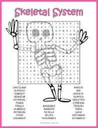 best 25 skeletal system ideas on pinterest skeletal system