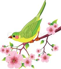bird sitting on blossom tree branch isolated on white