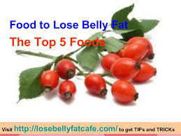 food to lose belly fat u2013 the top 5 foods