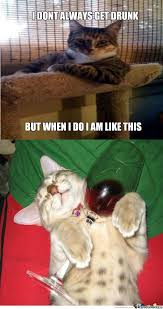 Drunk Cat Meme - drunk cat by derpyderp12 meme center