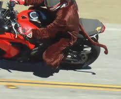 collection motorcycle rider halloween costume pictures halloween
