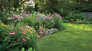 12 great perennials for your garden southern living
