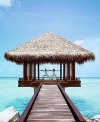 addicted maldives