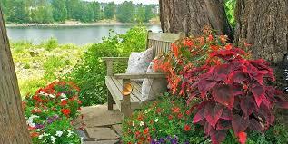 Ideas For Container Gardens Shade Container Gardening Ideas Saleros Club