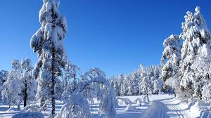 beautiful winter wallpapers beauty winter season nature
