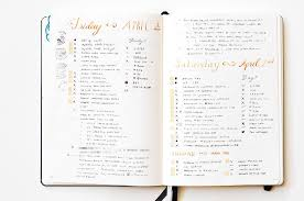 daily layout bullet journal bullet journal guide daily log fuzzable