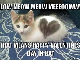 Happy Valentines Day Memes - image valentine kitteh meme generator meow meow meow meeeoowww