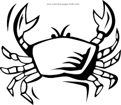free printable sea life coloring pages 28 best kids coloring pages images on pinterest drawings