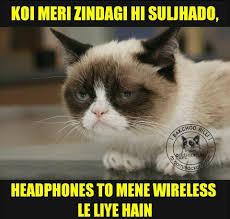 Cat Facts Meme - ab v kch baaki hai bc hazaribag boyz facts facebook