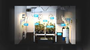 fully automated grow room youtube