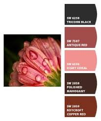 antique red paint color sw 7587 by sherwin williams view interior
