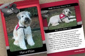 pets custom trading cards