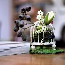 Decorative Bird Cages For Centerpieces by 54 Best Birdcages Images On Pinterest Bird Cage Centerpiece