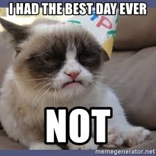 Best Day Ever Meme - i had the best day ever not birthday grumpy cat meme generator
