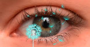 what causes eyes to be sensitive to light itchy red watery eyes how to treat eye allergies