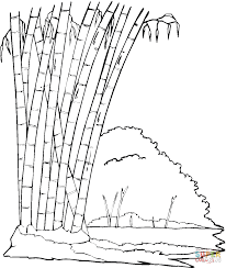 bamboo in the jungle coloring page free printable coloring pages