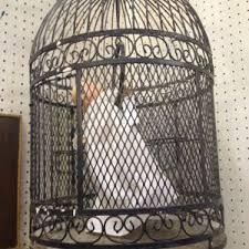 Birdcage Chandelier Shabby Chic Kitchen U0026 Dining Creative Birdcage Chandelier For Your Dining And