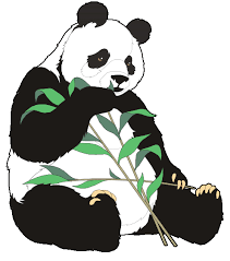 cartoon drawings eating bamboo clipart cliparts and others art