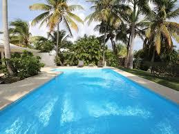 palmier du chili villa les palmiers piscine vue mer palmier royaux guadeloupe