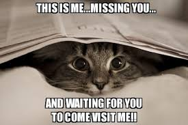 Funny I Miss You Memes - i miss my best friend quotes miss you my dear friend quotes