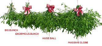 where to buy mistletoe buy mistletoe bunches mistletoe balls fresh berried