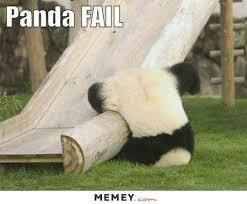 Funny Panda Memes - panda memes funny panda pictures memey com