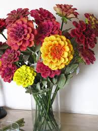 Artificial Flowers For Home Decoration Real Touch Zinnia Artificial Flowers Magenta Red Orange Yellow