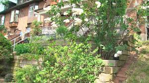 great tips and solutions for planting on a steep slope youtube