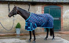 Bucas Irish Leg Warmer Riding Rug Get Ready For Winter With H U0026h 7 Turnout Rugs To Suit Your Horse