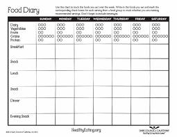 design studies journal template food journal 30 beautiful templates template archive