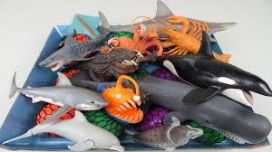 sea creatures for children learn colors squishy balls schleich