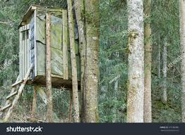 elevated wooden platform known tree stand stock photo 375186886