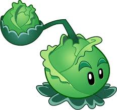 image cabbage pult png plants vs zombies character creator