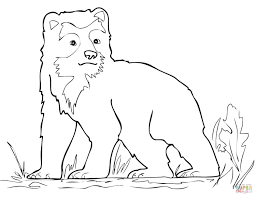 spectacled bear cub coloring page free printable coloring pages