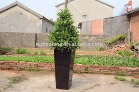 Tierra Verde Planter by Tall Black Planters Home Design Styles