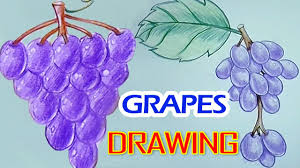 kids drawing 3d pictures how to draw grapes fruits drawing