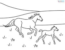 horse coloring pages to print lovetoknow