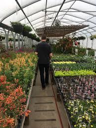 plants native to colorado cactus u0026 chaparral u2013 kineticheart