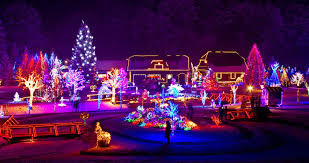 holiday lights trolley chicago holiday light tours party bus rental chicago wedding
