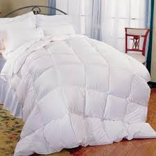 pillowtex feather and down comforter pillowtex feather and